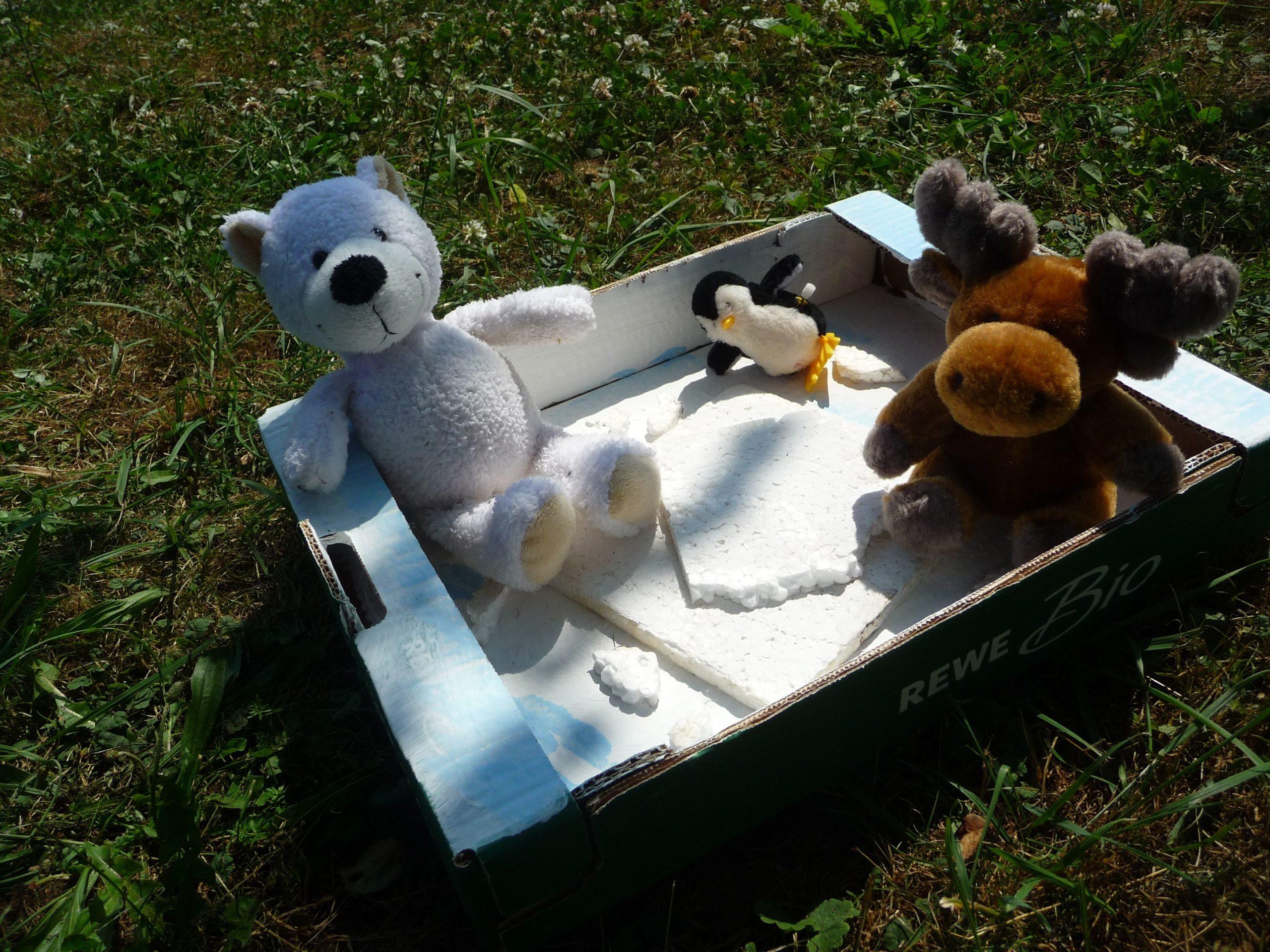 Eine Box mit verschiedenen Stofftieren, ein Bär, ein Pinguin und ein Elch