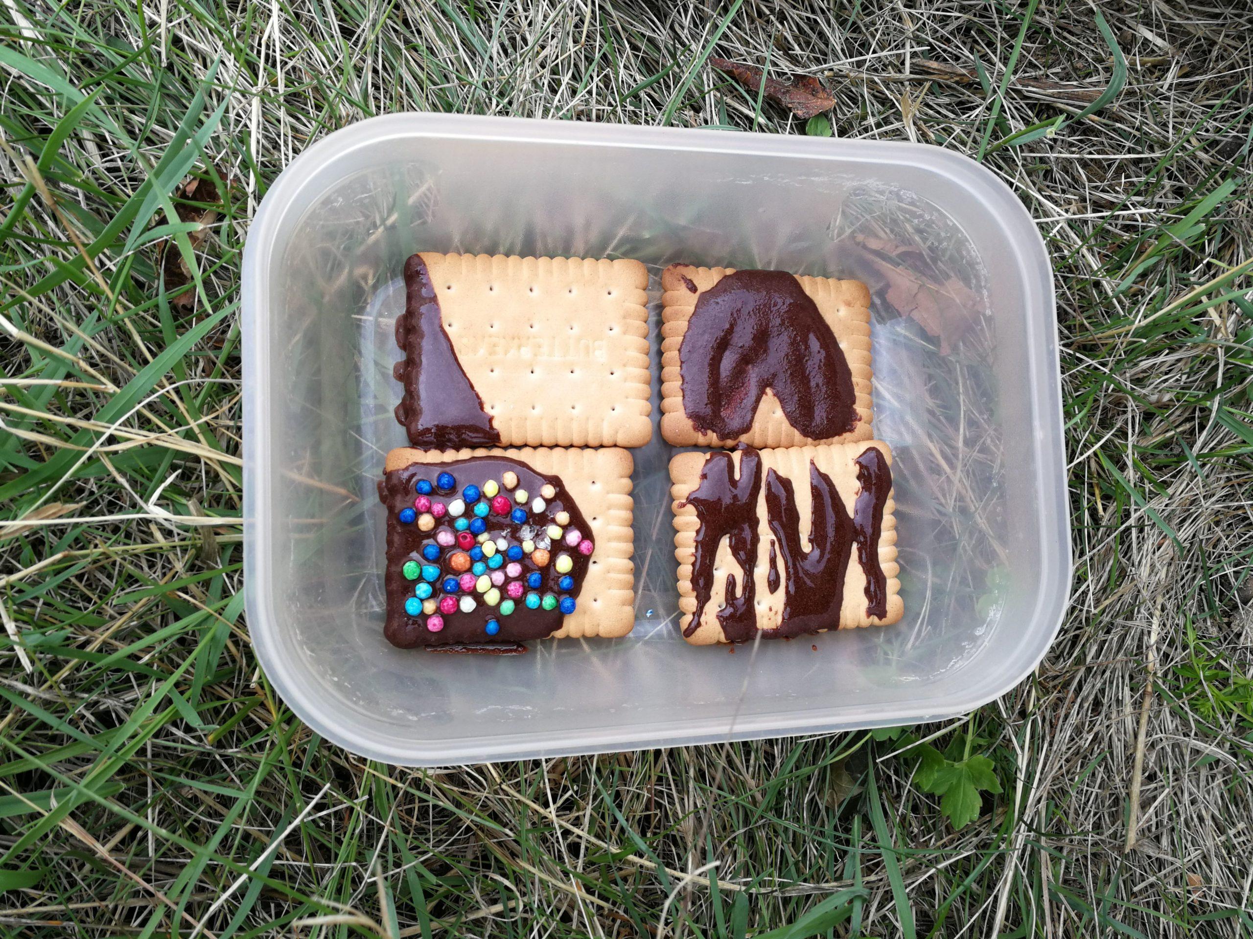 Kekse mit Schokolade in einer Dose