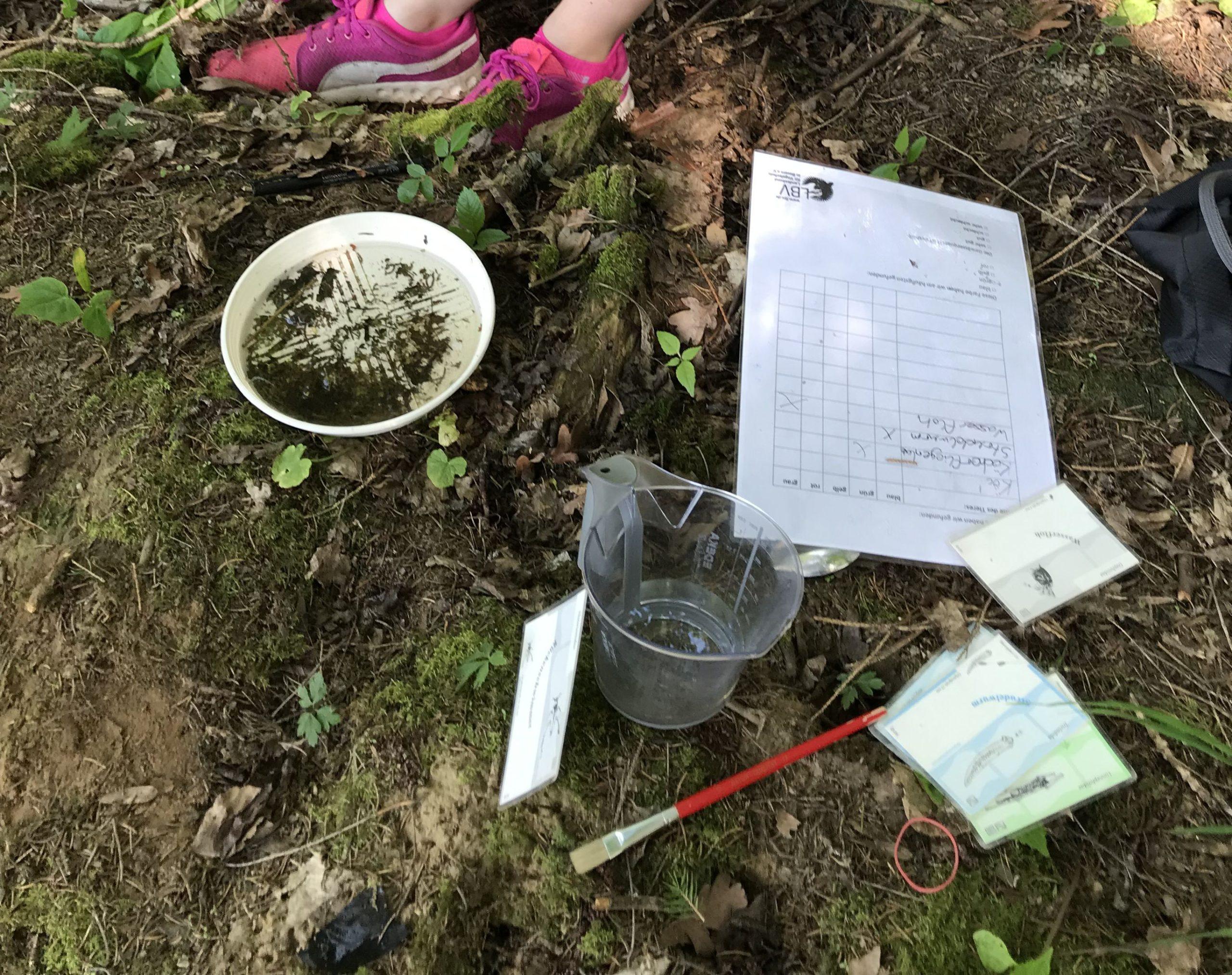 Wasserproben und ein Zettel zur Auswertung liegen auf dem Boden